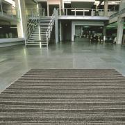 Dura-Scrape-Action